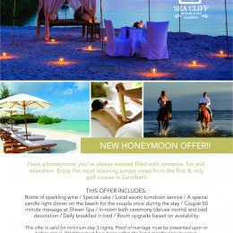 Honeymoon Offer
