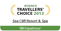 tripadvistor-traveller-choice-btn1